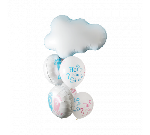 He or She? Balloon Bouquet image